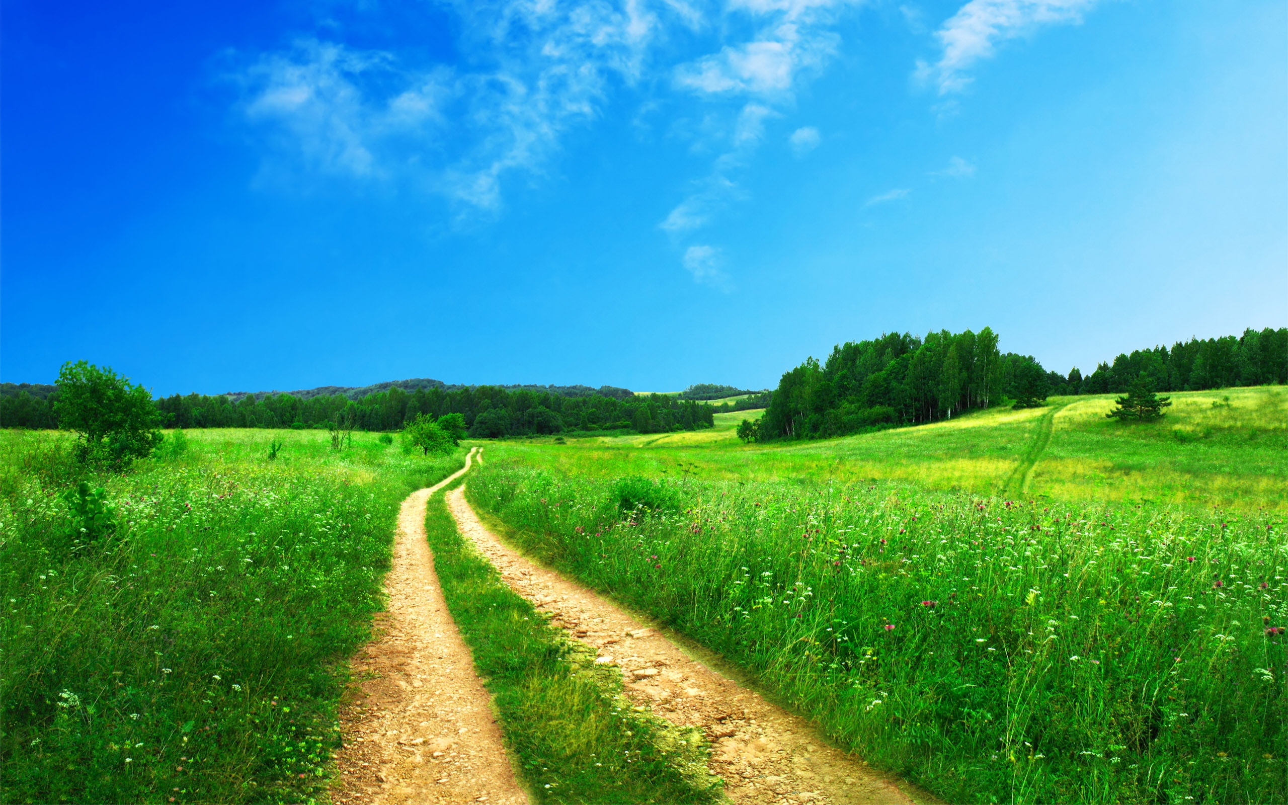 is there green grass in your life? thoughts on vibrancy from jennifer.