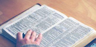 A Brief Journey through Psalms